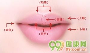图 标准漂亮的嘴唇长什么样