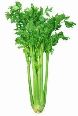 芹菜的美白护肤功效