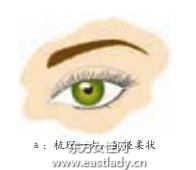 睫毛膏的正确使用方法