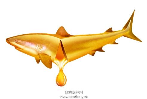 宝宝为什么要补充鱼肝油