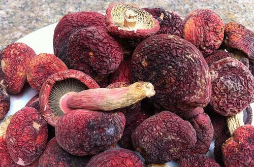 红菇的营养价值 抗癌养颜提高免疫力
