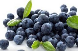 蓝莓的功效与作用  增强记忆力
