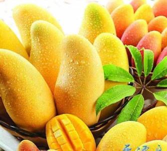 吃水果的最佳时间 不同时间点效果不同