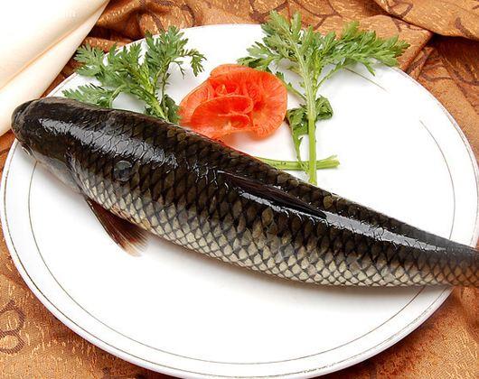 四大家鱼之草鱼的做法大全你了解吗