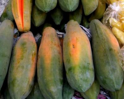 青木瓜怎么吃,全方位为你解答