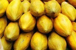 木瓜丰胸的最佳吃法 绝对