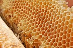 蜂王浆怎么吃最好 蜂王浆的禁忌人群有哪些