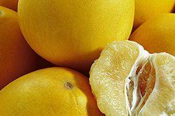 柚子的低热量大功效 它有