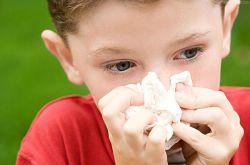 宝宝流鼻血要警惕 可能是白血病惹的祸