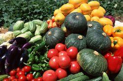 强碱性食物有哪些 你不可不知的饮食小常识
