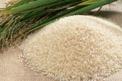粳米和大米的区别 各种