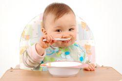婴儿首选辅食是蛋黄 宝宝辅食的10大误区需禁忌