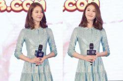 明星秋季服裝搭配 劉詩詩還是一如既往的淑女
