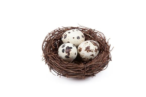 鹌鹑蛋的做法大全,让胃和鹌鹑蛋一起躁动起来