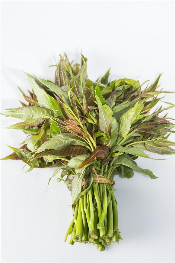 香椿芽的营养价值高,这样吃最营养健康