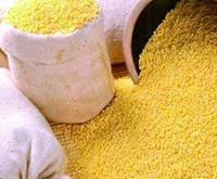 小米营养价值高,怎么吃效果更好