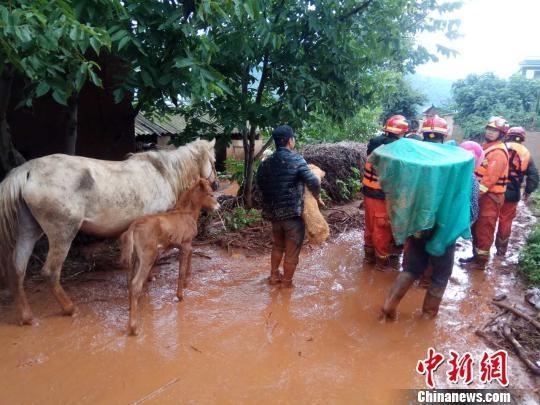 云南寻甸县多处突发洪水 消防成功救出26人转移