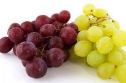 提子和葡萄的区别,为什么提子比葡萄贵?