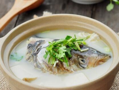 女性美容养生鱼头豆腐汤