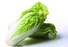 女人吃白菜有什么好处 润肠排毒促进食欲