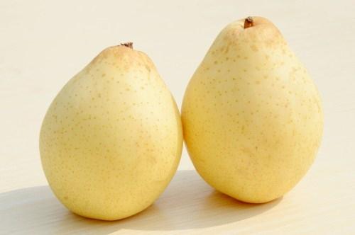 梨的种类有哪些 这些常识一定要了解